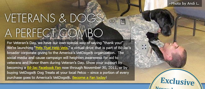 Vets and dogs, a perfect combo!